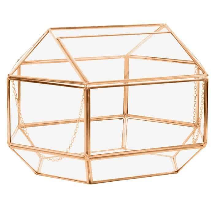 terrarium card box